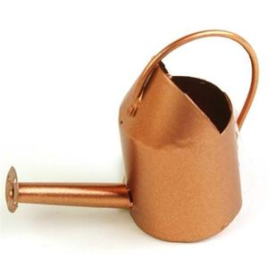 Mini watering can