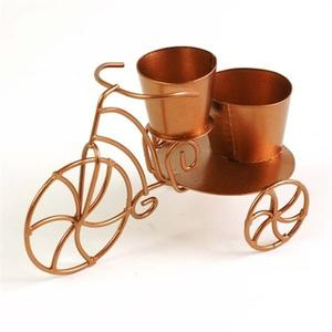 Mini tricycle planter